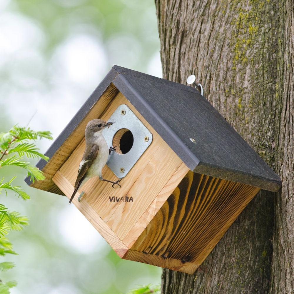Nestkasten, bestellen van nestkasten voor Koolmees, Pimpelmees, Huismus en vele andere soorten